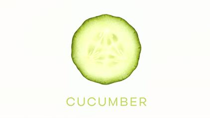 Cucumber Boek omslag